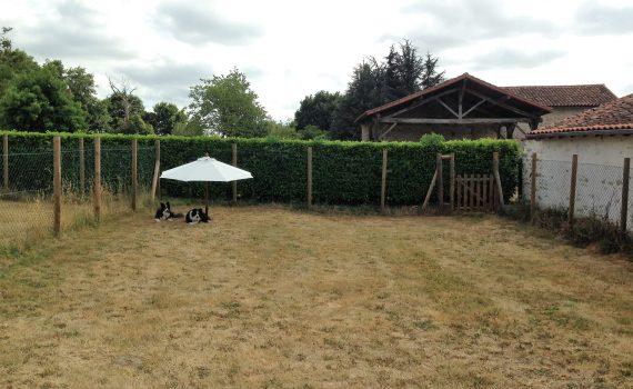 Small Dog Garden